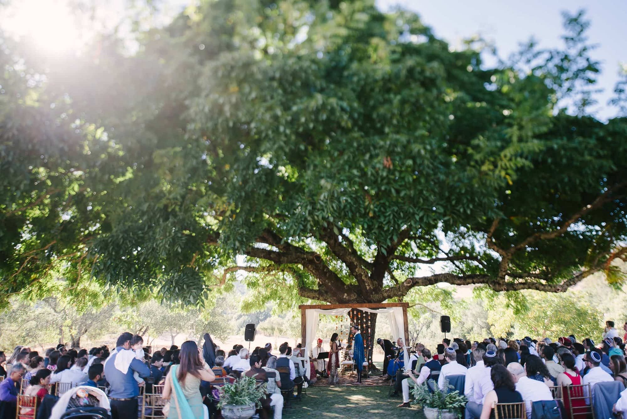 Indian Jewish SSS Ranch Wedding Ceremony