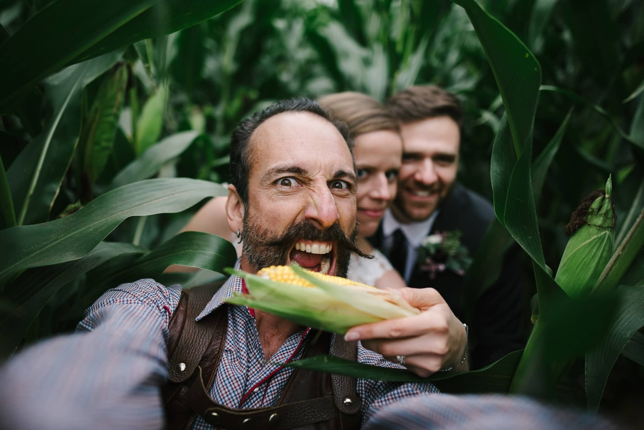 New York Wedding in corn field