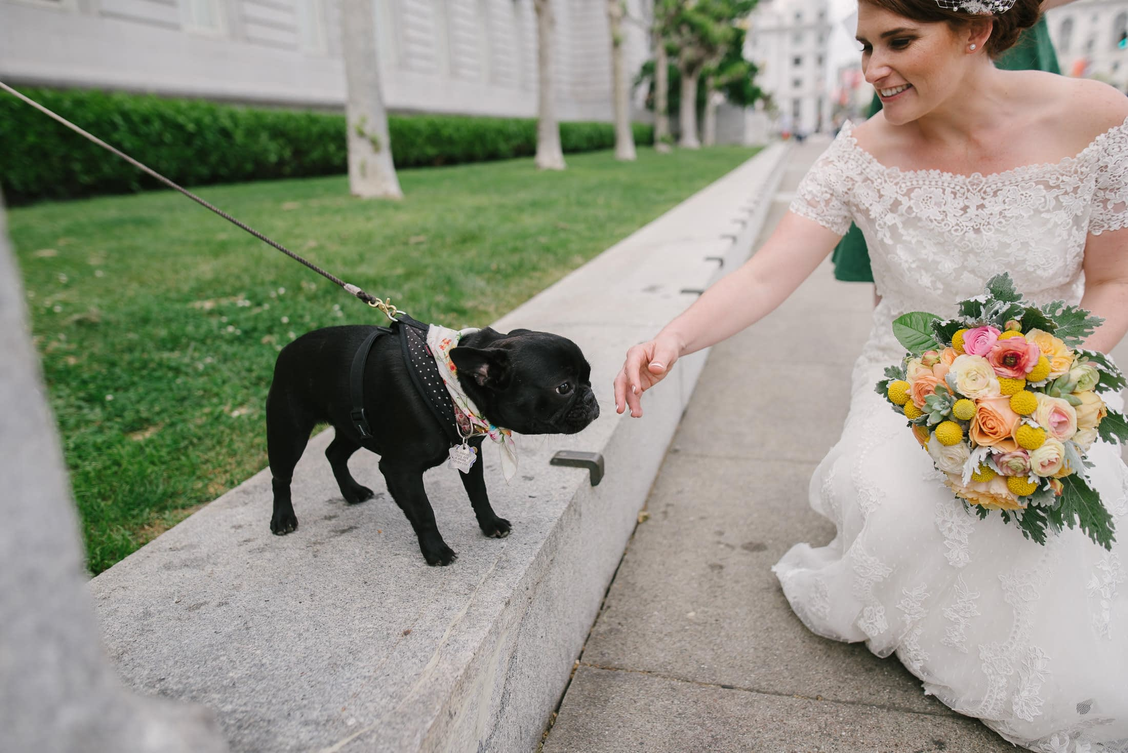 San Francisco City Hall Wedding with Pug